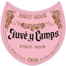 Juve Y Camps Brut Rose Nv