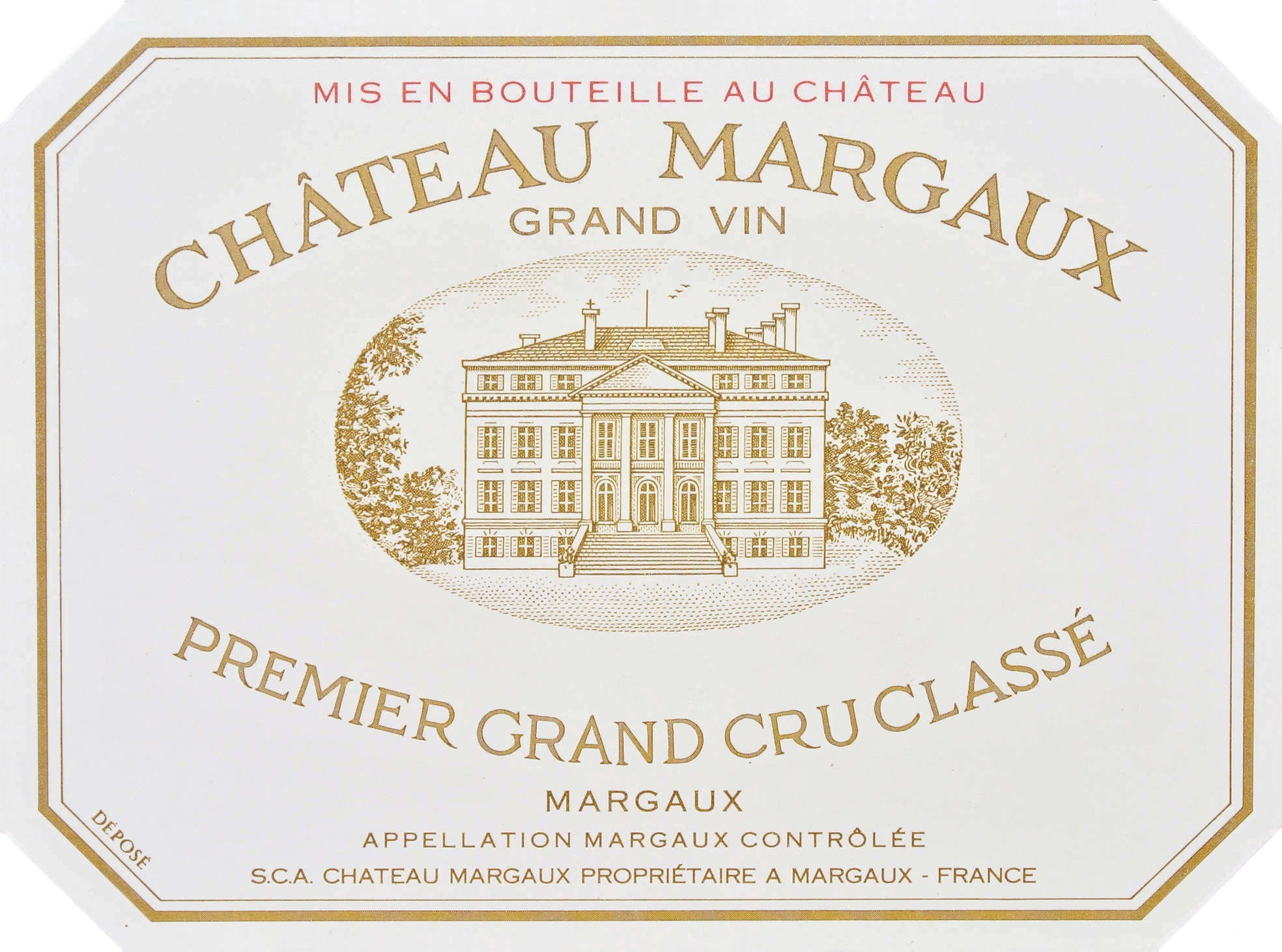 Chat Margaux