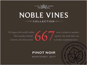 Noble Vines667 Pn